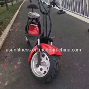 1500W Harley Electric Bike 18inch Tire Mountain Electric Scooter pictures & photos
