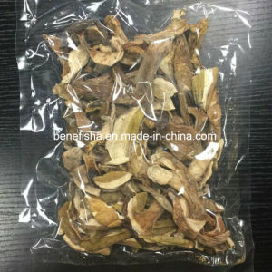 Dried Porcini Mushrooms pictures & photos