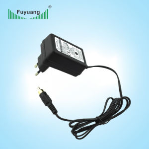 Plug-in Type RCA Connector 1A 12V Li-ion Battery Charger pictures & photos