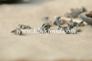 Chinese Dry Black Fungus Natural Vegetable with Size 2.5cm Above pictures & photos