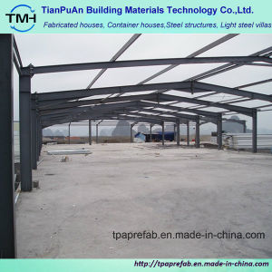 Experienced Steel Structure Building Design pictures & photos