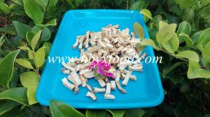 Horseradish Granules Horseradish Root pictures & photos