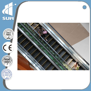 Commercial Escalator of Speed 0.5m/S with Ce Certificate pictures & photos