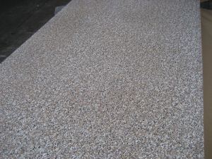 High Pressure Laminate Produce by Wuya (1300*2800) -10 pictures & photos