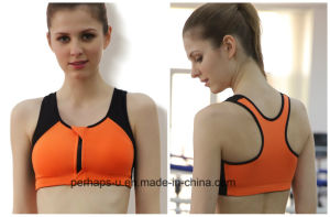 Hot Sale Women Fitness Clothes Sports Bra with Zipper pictures & photos