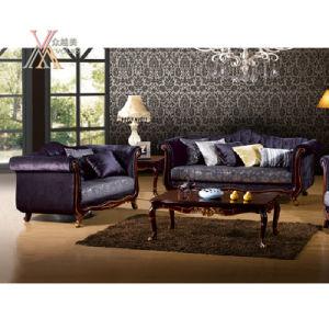 Antique European Fabric Sofa Set (NCS30)