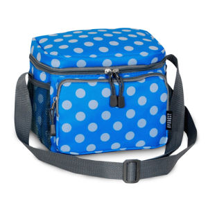 Eco Picnic Ice Cool Shoulder Insulated Lunch Bag pictures & photos