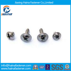 Stainless Steel Cross Recessed Head Micro Screws, Small Screw pictures & photos