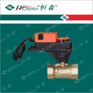 D Q F-F B Brass Motorized Ball Valve with 5nm Actuator pictures & photos