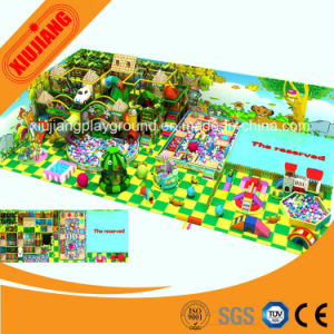 Kids Modern Fashion Indoor Playground Equipment with Long Slides pictures & photos