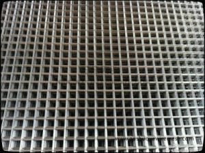 2X2 Galvanized Steel Welded Wire Mesh Panel for Fence pictures & photos