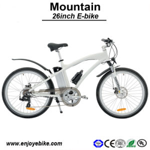 MTB Atb Bicycle Motor Power 500W Electric Bike E-Bike with Lithium Battery (PE-TDE01Z)