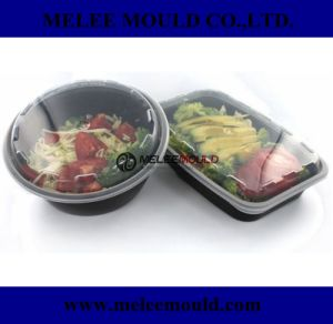 Microwavable Plastic Food Container Mold pictures & photos