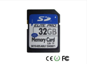Wholesale 32GB PC/Camera SD Card (Class10) pictures & photos