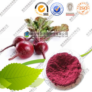 Food Pigment Beetroot Powder 10: 1 pictures & photos