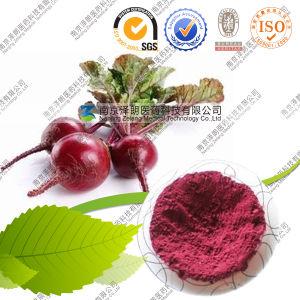 Food Pigment Beetroot Powder 10: 1