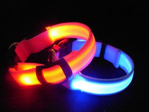 New Products LED Pet Collar pictures & photos