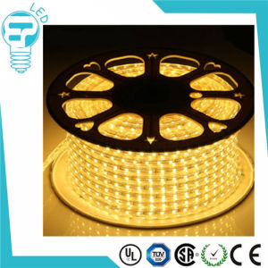 China LED 60LED/Meter 100m/Roll DMX LED Strip Outdoor Table Lamp 220V LED Strip pictures & photos