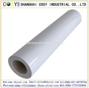 Polymeric Vinyl, PVC Self Adhesive Vinyl, Eco-Solvent Printing pictures & photos