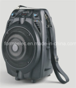 Portable Speaker with Handle Trolley Speaker Subwoofer RMS 15W pictures & photos