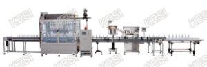 Anti-Corrosive Liquid Filler, Anti-Corrosive Liquid Bottling Machine pictures & photos