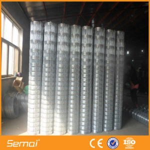 Steel Wire Hot DIP Galvanized Poultry Field Mesh Fence pictures & photos