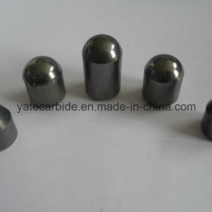 Tungsten Carbide Button for Oil Drilling pictures & photos