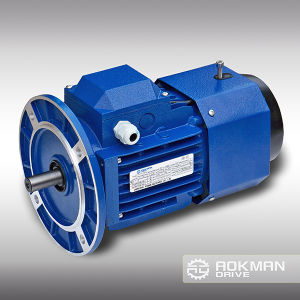 AC Motor with Break (0.12~7.5kw) pictures & photos