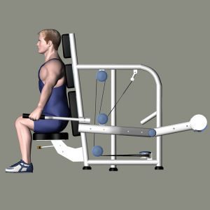 Fitness Equipment for Seated Triceps Extension (M2-1011) pictures & photos