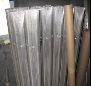 304 Stainless Steel Wire Mesh pictures & photos