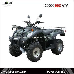 200cc UTV Air Cooled 250cc ATV Quad Bike Water Cooled Big Farm ATV pictures & photos