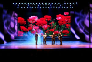 Full Color LED Video Screen for Stage Performance (P10) pictures & photos