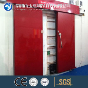 Electric Sliding Door Used for Cold Room pictures & photos