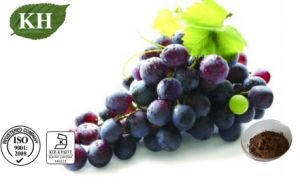Pure Natural Grape Extract 5%-8% Resveratrol for Heart Disease Prevention pictures & photos
