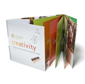 Leaflet Printing /Brochure Printing/Catalogue Printing (jhy-233)