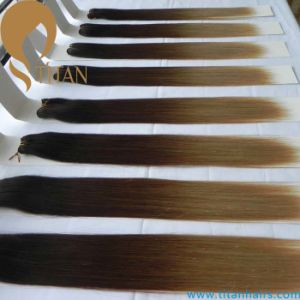 Ombre Color Brazilian Remy Human Hair Weave (TT525)