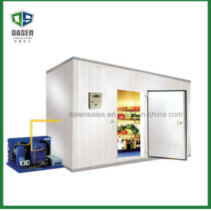 Hotel Catering Cold Storage Room for Beef pictures & photos