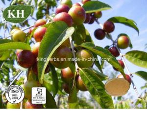 100% Natural Camu Camu Extract / Vitamin C 20% pictures & photos