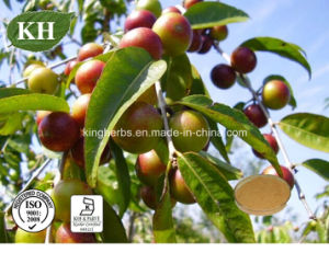 100% Natural Vitamin C 20 %, Camu Camu Extract pictures & photos