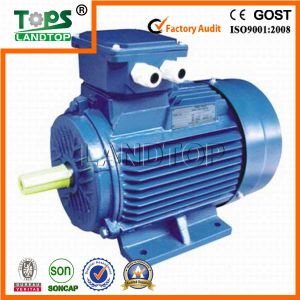 Tops Y2 Series 3-phase Electrical Motor for sale pictures & photos