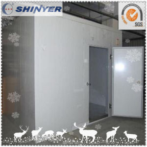 Cold Storage for Frozen Meat pictures & photos