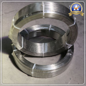 SUS 316 Stainless Steel Cold Rolled Strip pictures & photos