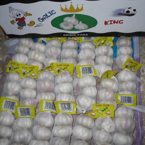 Small Packing Pure White Garlic (5.0cm and up) pictures & photos