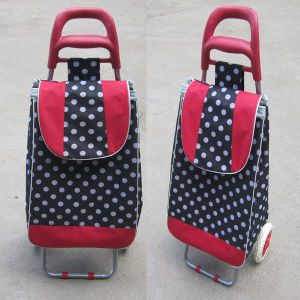 Shopping Trolley Bag (XY-404A) pictures & photos