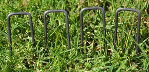 SOD Pins and Staples Landscape Fabric Staples pictures & photos