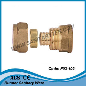 Brass Female Straight Fitting for Pex Pipe (F03-102) pictures & photos