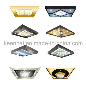 Etched Design Decorative Stainless Steel Elevator Ceiling Light Panel pictures & photos