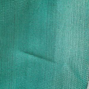 Green Sun Shade Plastic Net for Agriculture and Outdoor pictures & photos