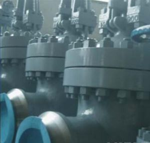 Socket Welded Bolted Bonnet Stainless Steel Gate Valve