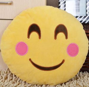 2016 Latest Hot Selling Emoji Pillow pictures & photos